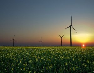 FPC Briefing: The capitalist case for renewables